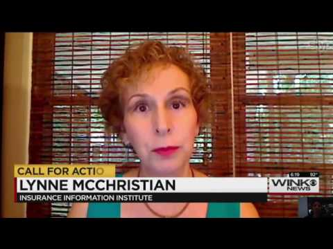 Lynne McChristian; Homeowners Insurance & Repairs; WINK-TV; 6-22-16