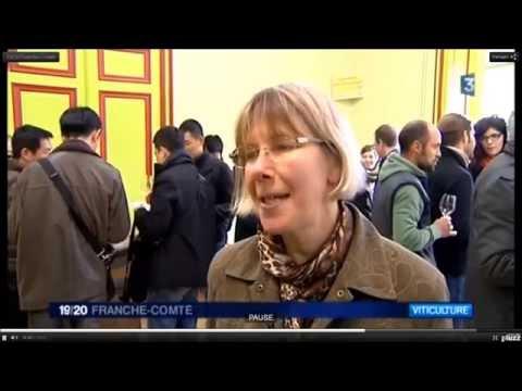 Wink TV Interview Jura Book