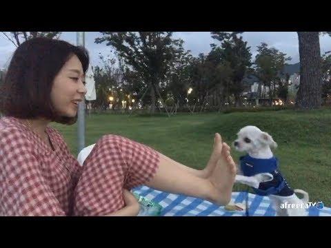 [SalGuTV] 몽구와 소풍가기~! KOREAN BJ